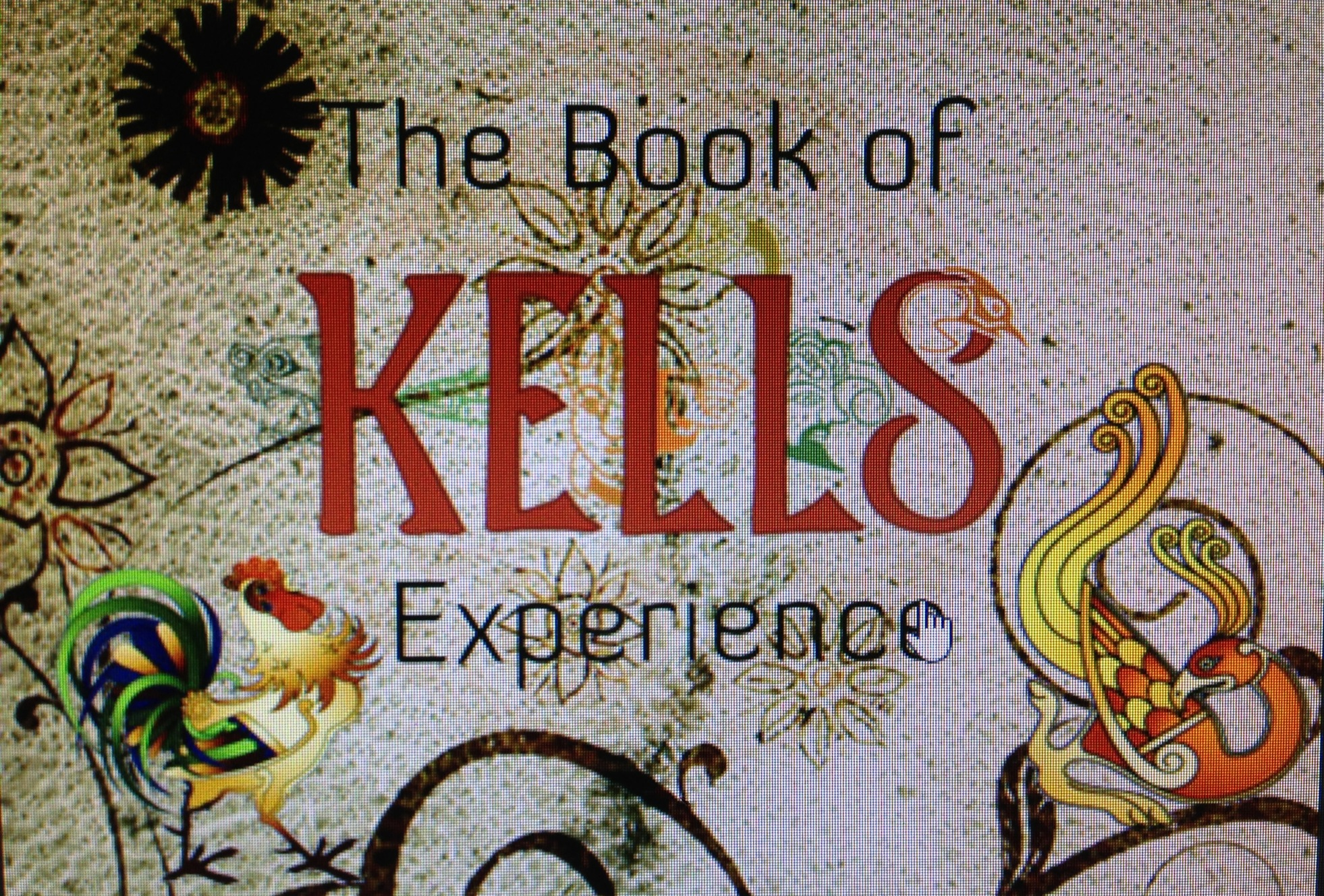 The book of kells experience